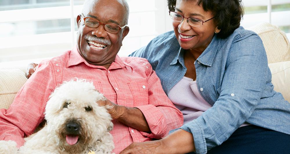 Senior Pets for Seniors